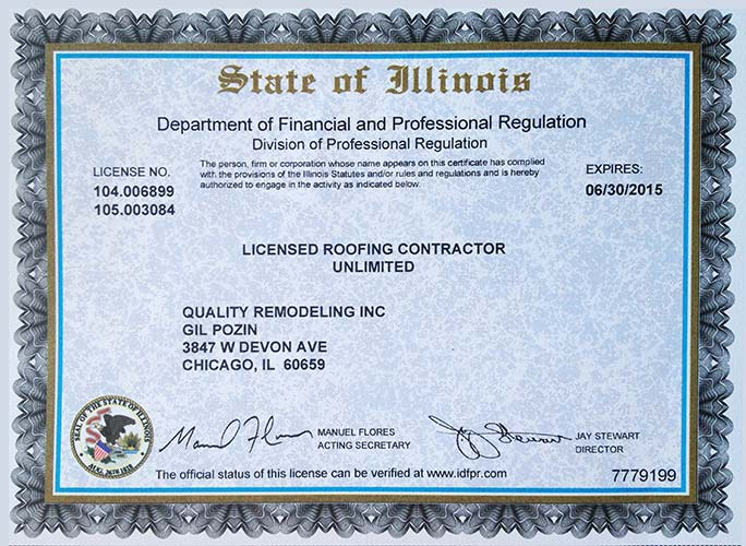 state of Illinois professional regulation license